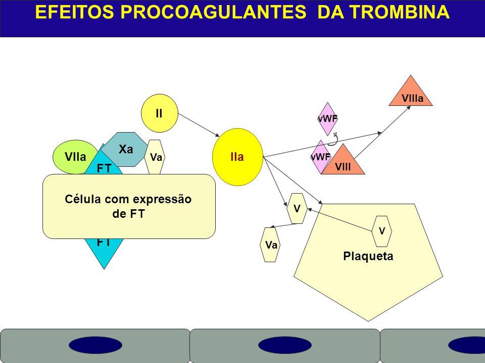 EFEITOS PROCOAGULANTES DA TROMBINA