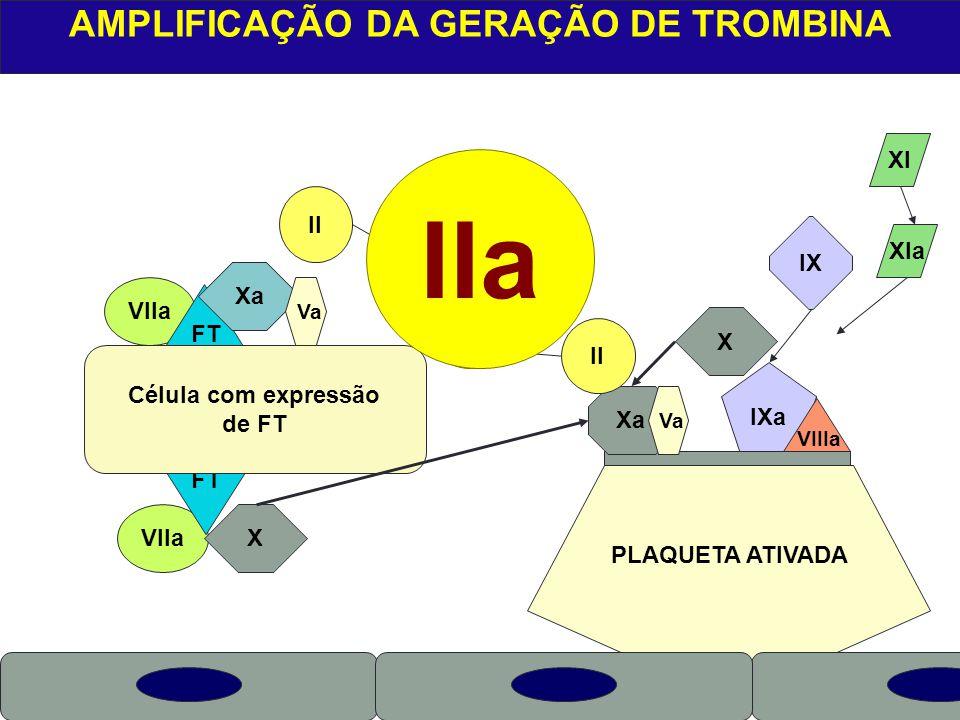 AMPLIFICAÇÃO DA GERAÇÃO DE TROMBINA