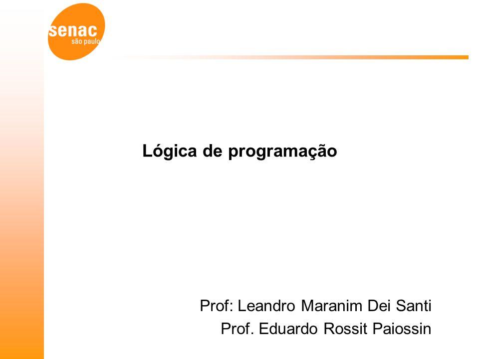 Prof: Leandro Maranim Dei Santi Prof. Eduardo Rossit Paiossin
