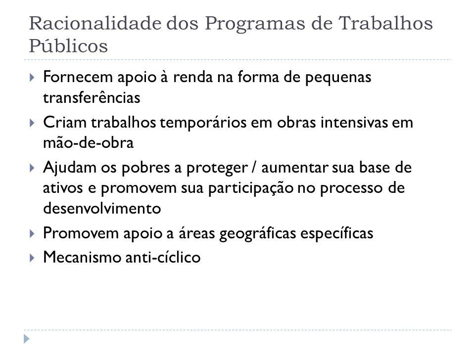 Racionalidade dos Programas de Trabalhos Públicos