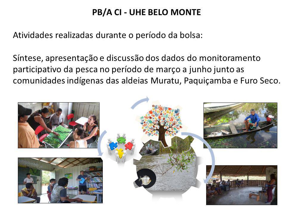 PB/A CI - UHE BELO MONTE Atividades realizadas durante o período da bolsa: