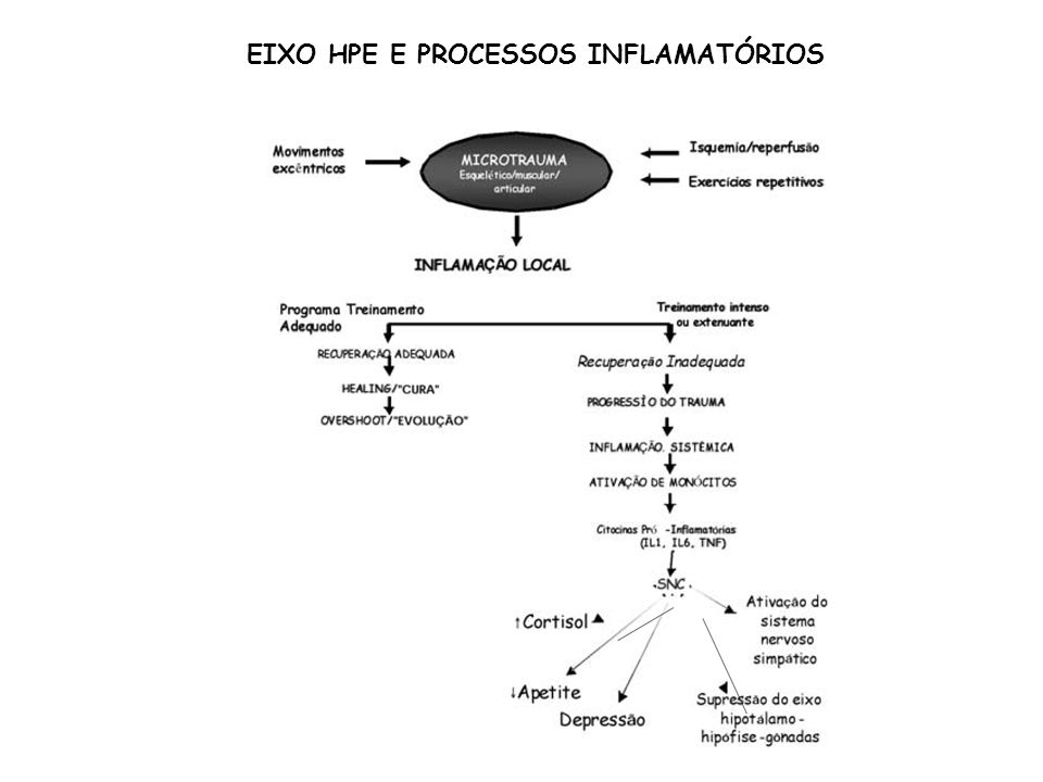 EIXO HPE E PROCESSOS INFLAMATÓRIOS
