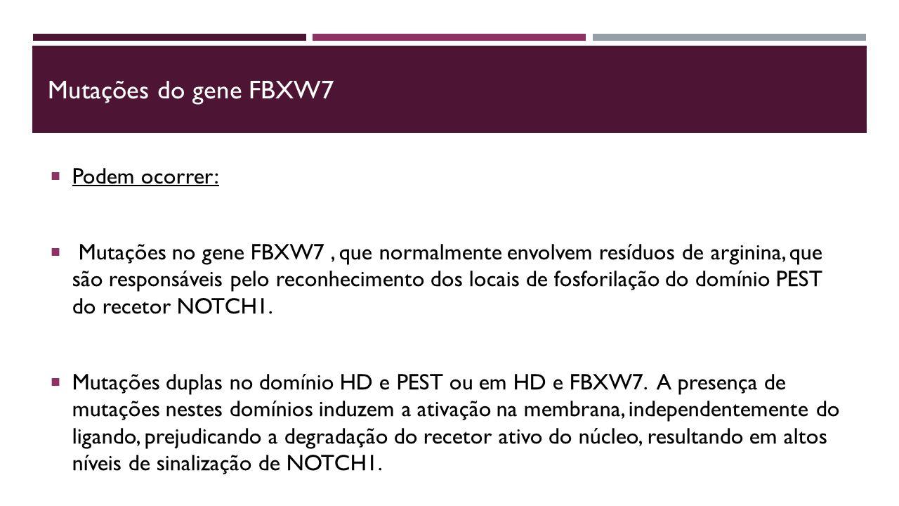 Mutações do gene FBXW7 Podem ocorrer: