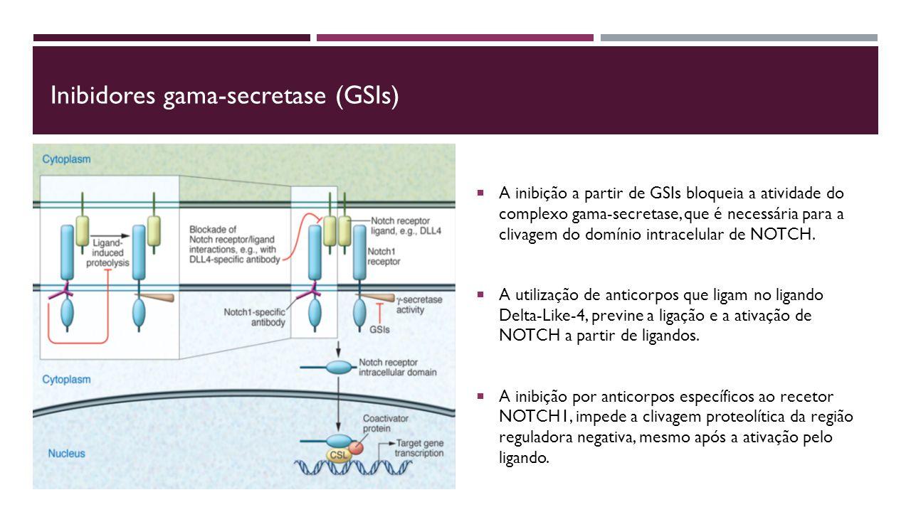 Inibidores gama-secretase (GSIs)