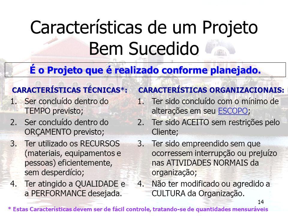 Características de um Projeto Bem Sucedido
