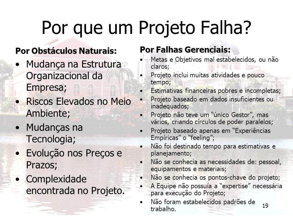 Por que um Projeto Falha