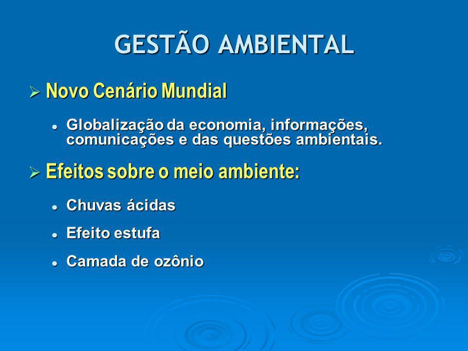 GESTÃO AMBIENTAL Novo Cenário Mundial Efeitos sobre o meio ambiente:
