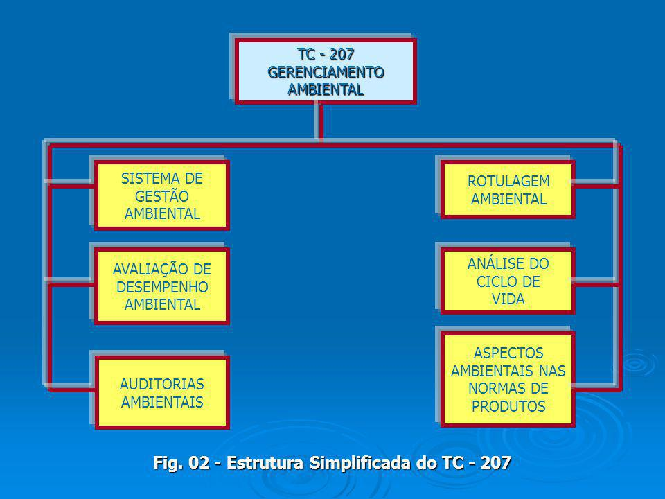 Fig. 02 - Estrutura Simplificada do TC - 207