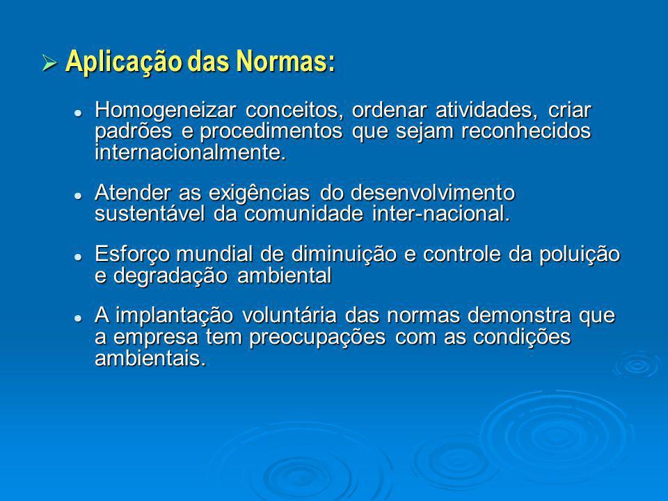 Aplicação das Normas: Homogeneizar conceitos, ordenar atividades, criar padrões e procedimentos que sejam reconhecidos internacionalmente.