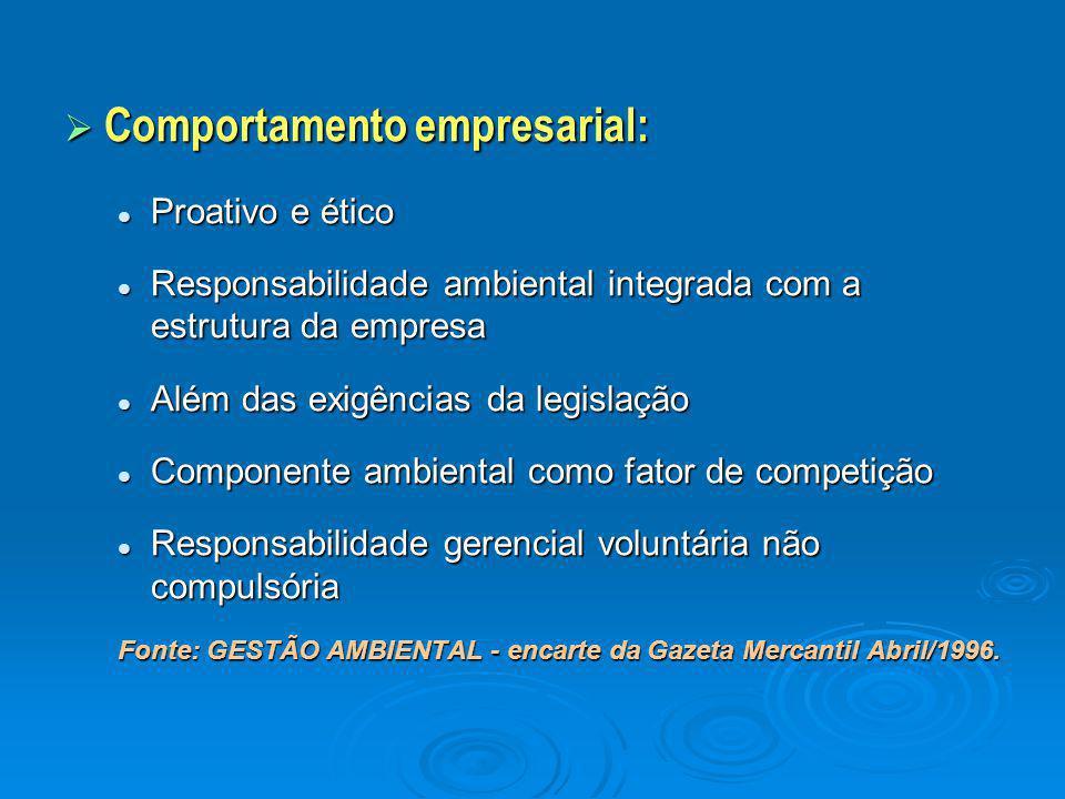 Comportamento empresarial: