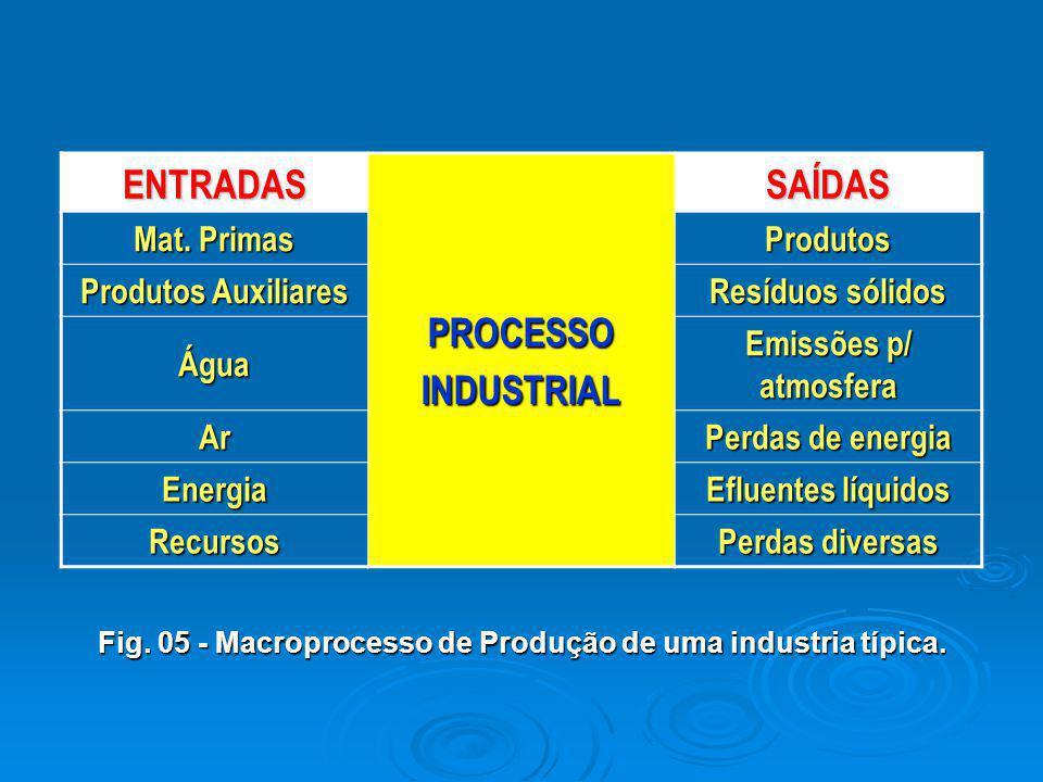 Fig. 05 - Macroprocesso de Produção de uma industria típica.