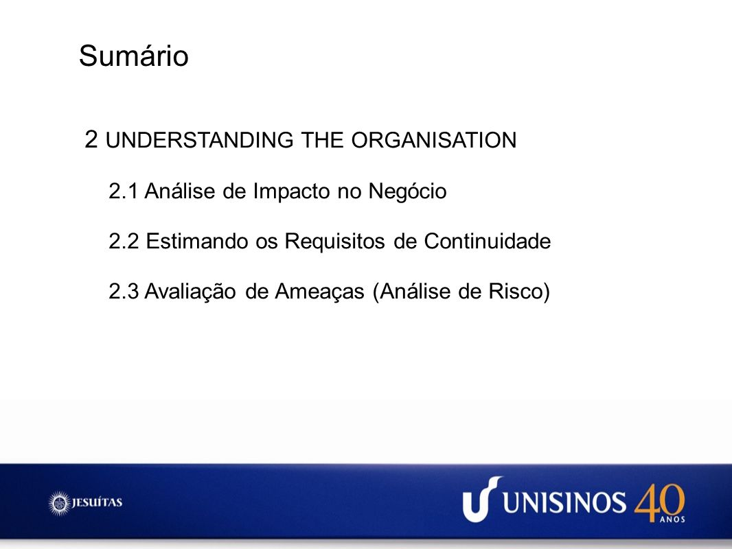 Sumário 2 UNDERSTANDING THE ORGANISATION