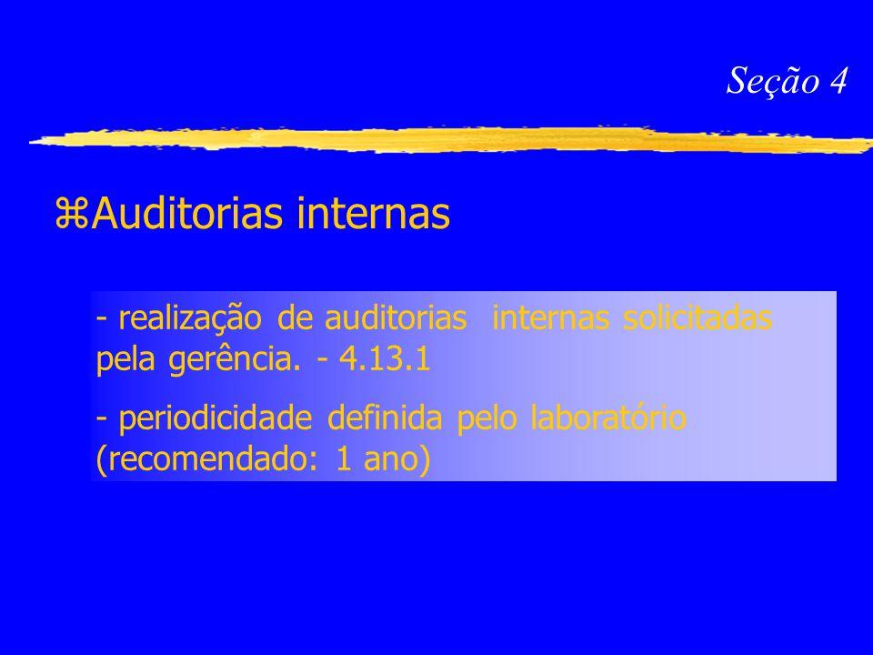 Auditorias internas Seção 4