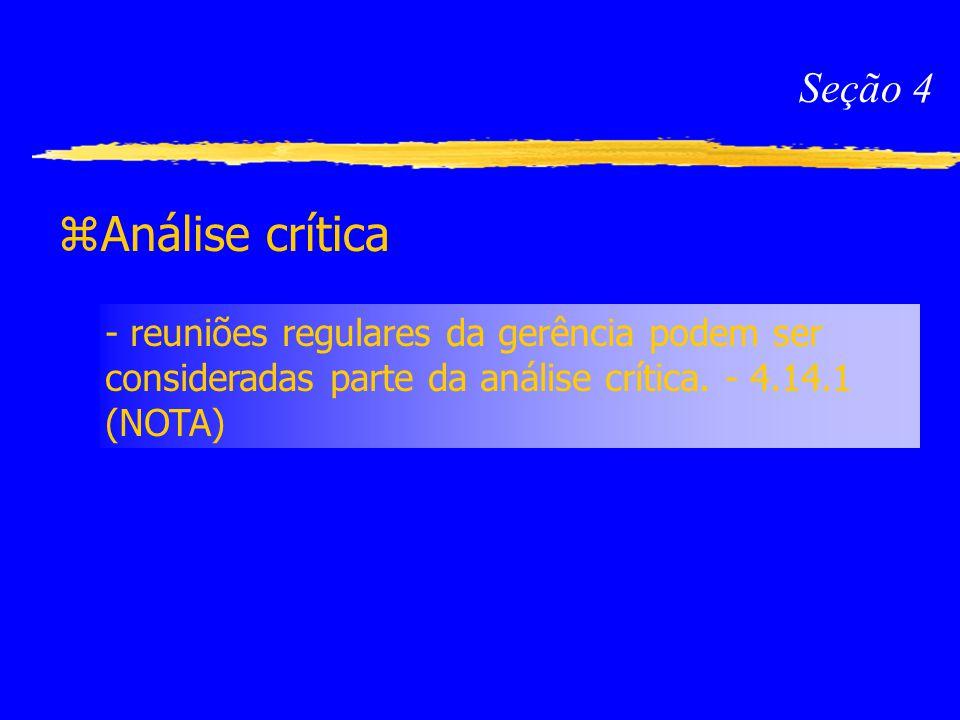Seção 4 Análise crítica.