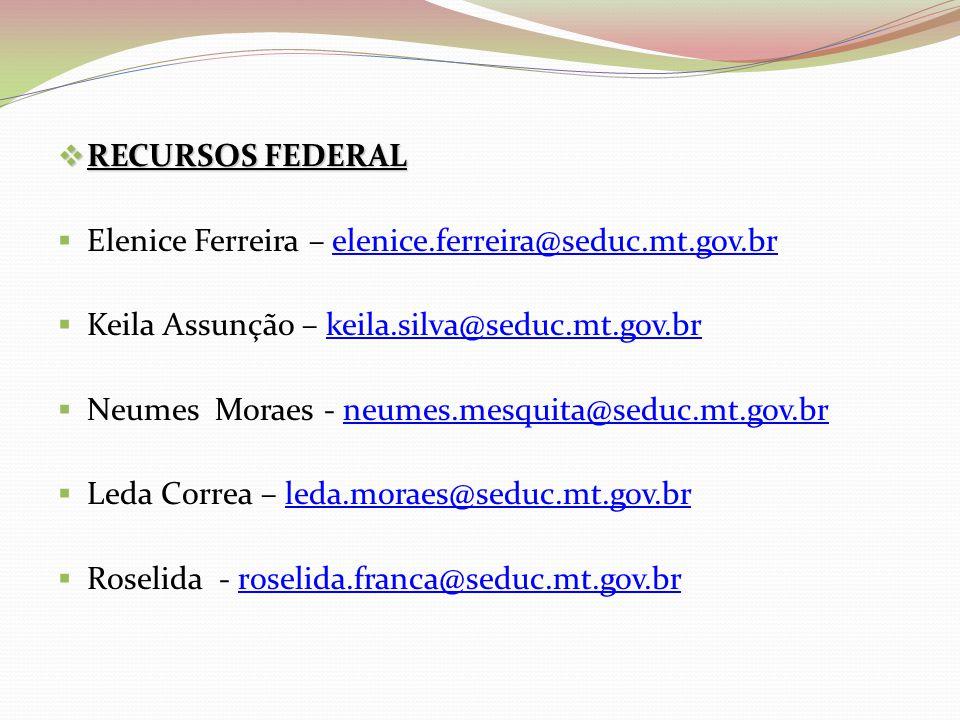 RECURSOS FEDERAL Elenice Ferreira – elenice.ferreira@seduc.mt.gov.br. Keila Assunção – keila.silva@seduc.mt.gov.br.