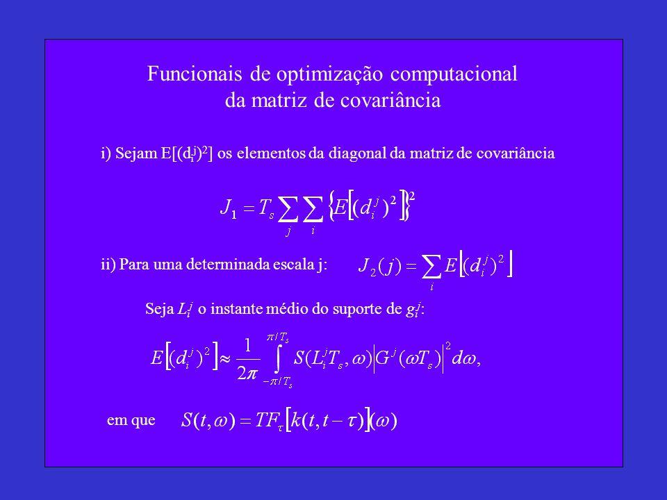 Funcionais de optimização computacional da matriz de covariância