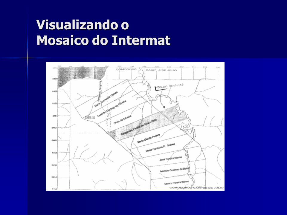 Visualizando o Mosaico do Intermat
