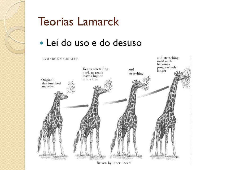 Teorias Lamarck Lei do uso e do desuso