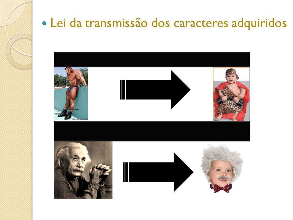 Lei da transmissão dos caracteres adquiridos