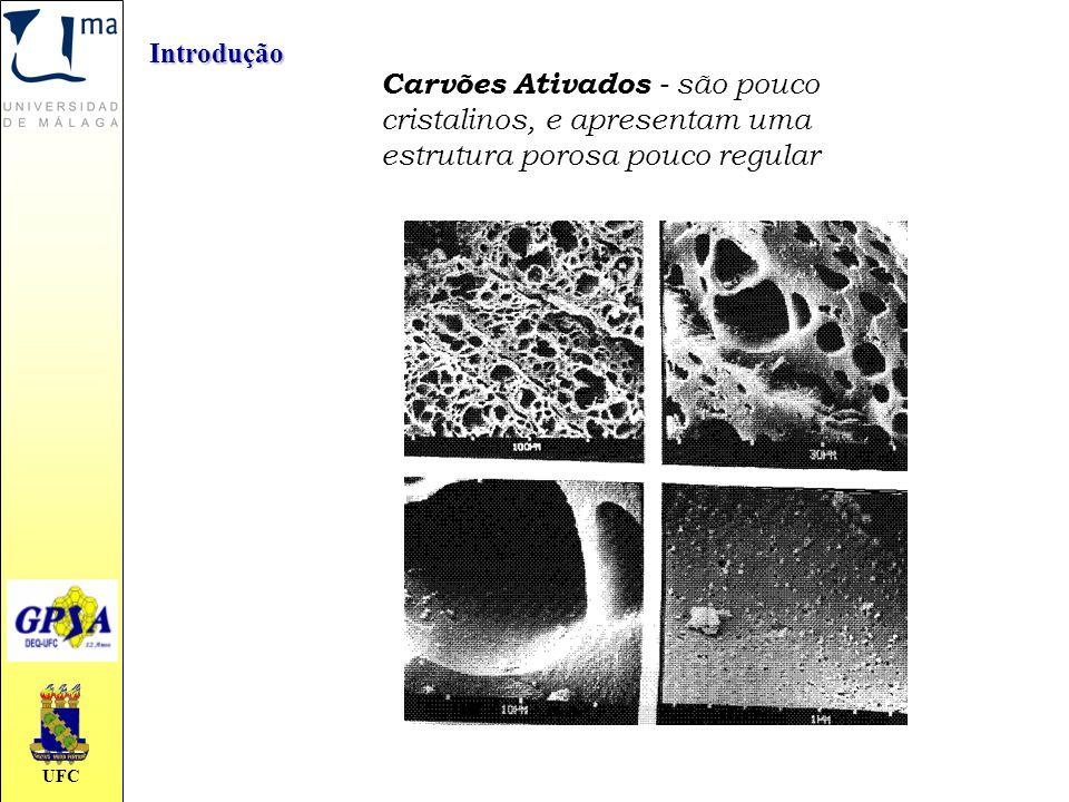 Introdução Carvões Ativados - são pouco cristalinos, e apresentam uma estrutura porosa pouco regular.