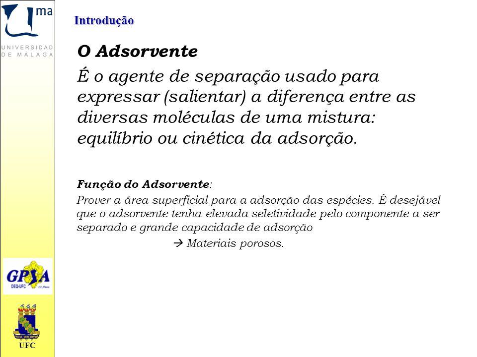 Introdução O Adsorvente.