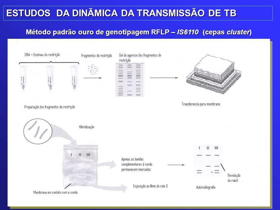 ESTUDOS DA DINÃMICA DA TRANSMISSÃO DE TB