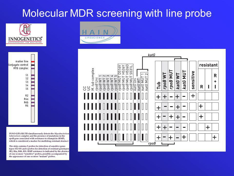 Molecular MDR screening with line probe