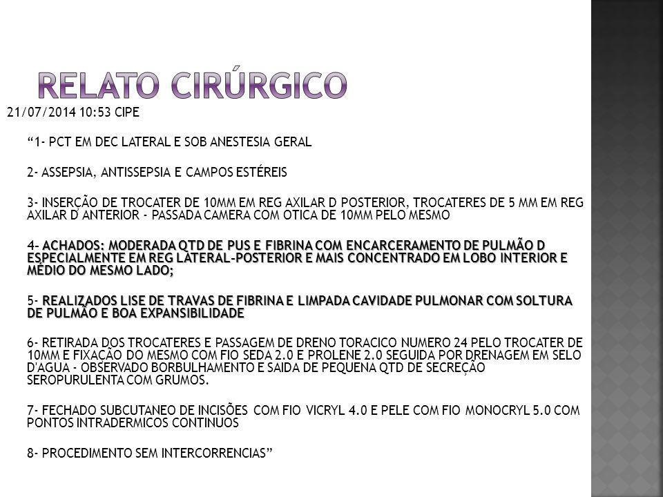Relato cirúrgico 21/07/2014 10:53 CIPE