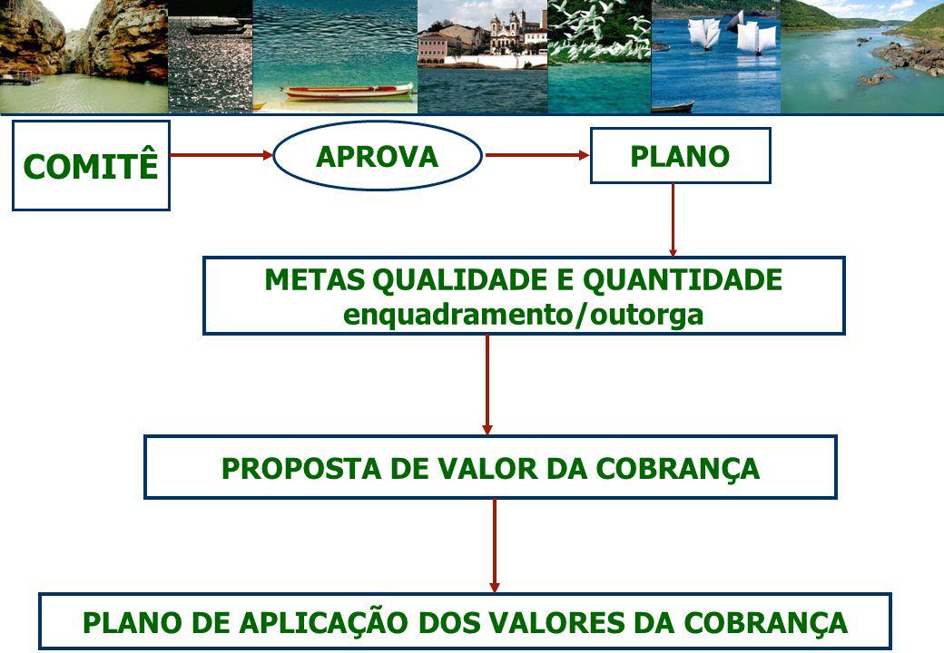 COMITÊ APROVA PLANO METAS QUALIDADE E QUANTIDADE enquadramento/outorga