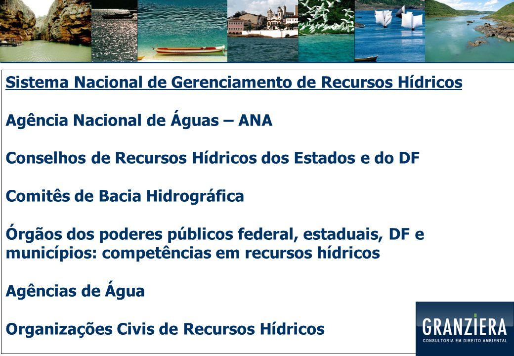 Sistema Nacional de Gerenciamento de Recursos Hídricos Agência Nacional de Águas – ANA Conselhos de Recursos Hídricos dos Estados e do DF Comitês de Bacia Hidrográfica Órgãos dos poderes públicos federal, estaduais, DF e municípios: competências em recursos hídricos Agências de Água Organizações Civis de Recursos Hídricos