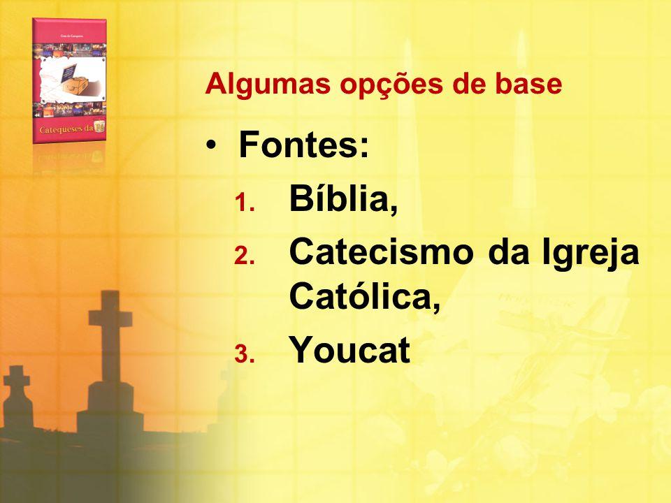 Catecismo da Igreja Católica, Youcat