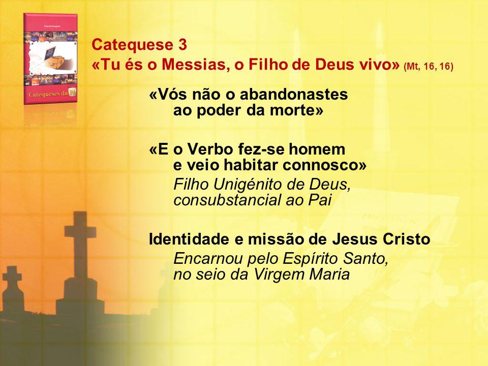Catequese 3 «Tu és o Messias, o Filho de Deus vivo» (Mt, 16, 16)