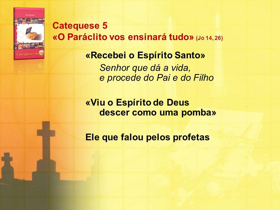 Catequese 5 «O Paráclito vos ensinará tudo» (Jo 14, 26)