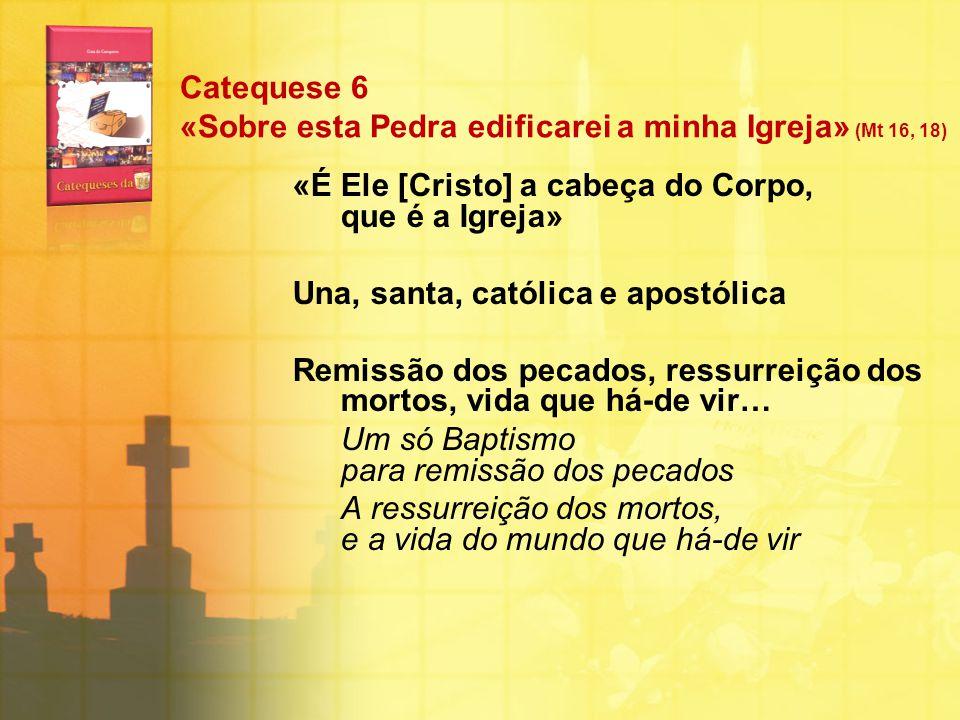 Catequese 6 «Sobre esta Pedra edificarei a minha Igreja» (Mt 16, 18)
