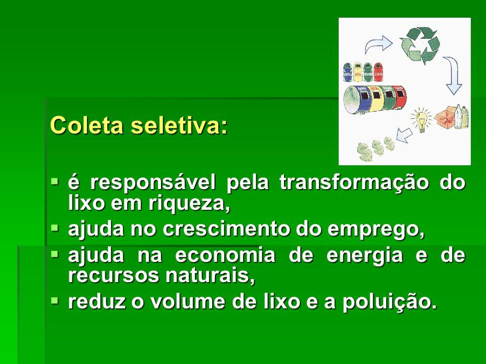 Coleta seletiva: é responsável pela transformação do lixo em riqueza,