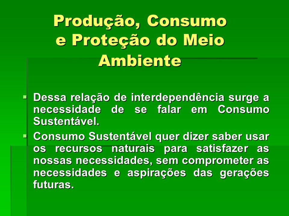 Produção, Consumo e Proteção do Meio Ambiente