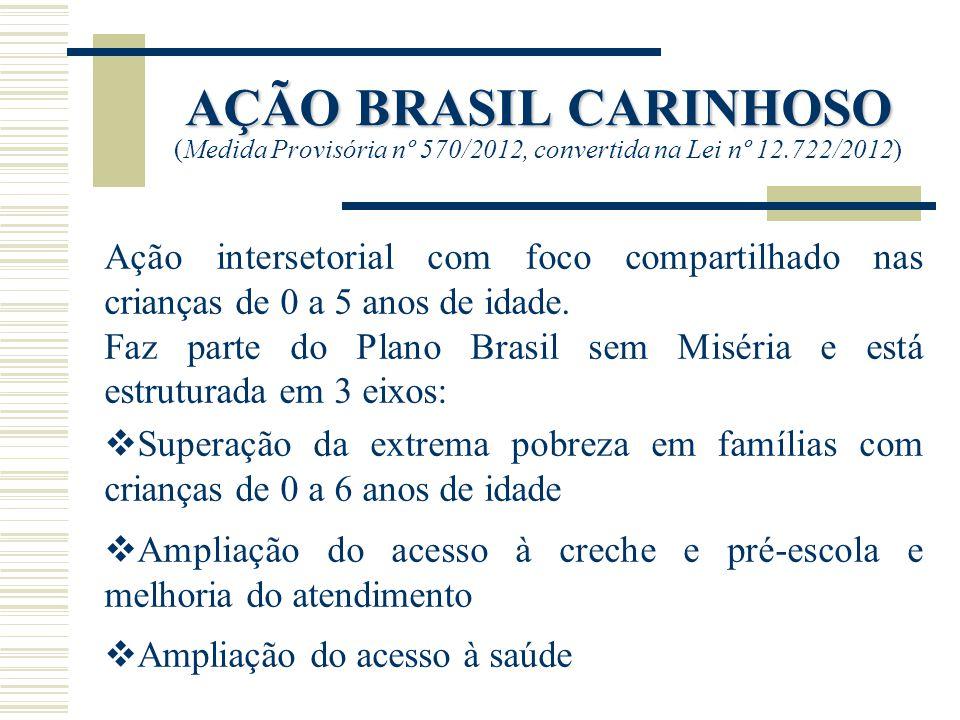 AÇÃO BRASIL CARINHOSO (Medida Provisória nº 570/2012, convertida na Lei nº 12.722/2012)