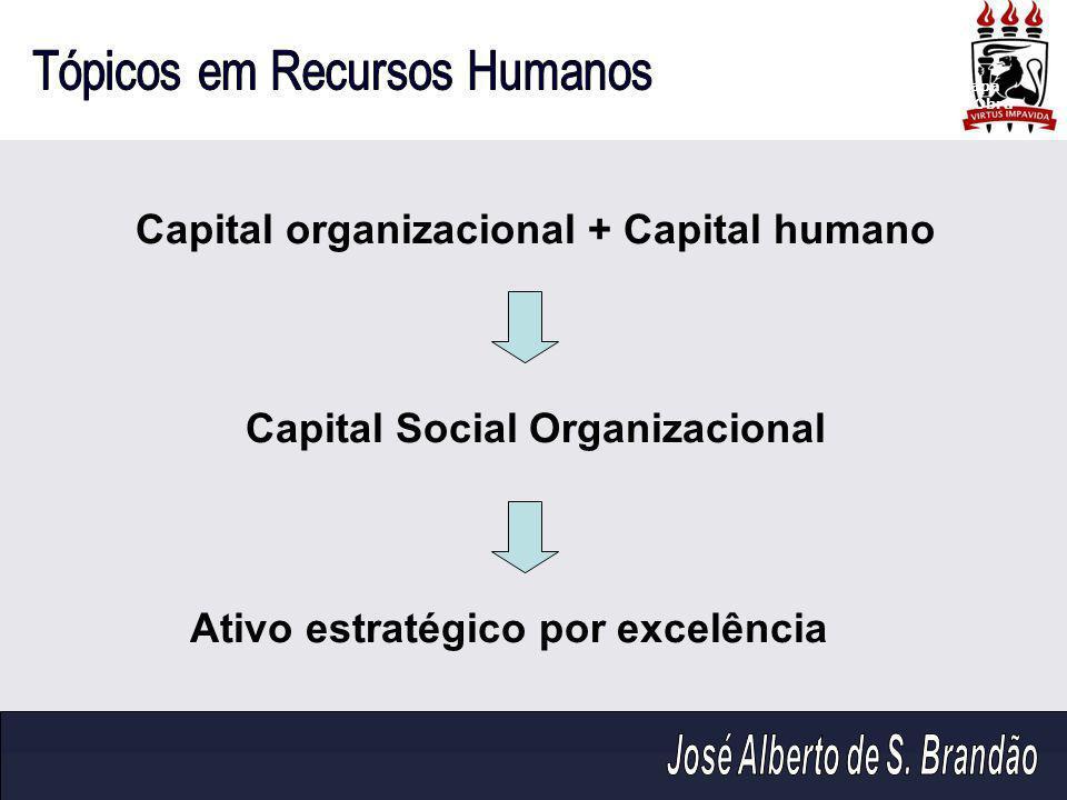 Capital organizacional + Capital humano