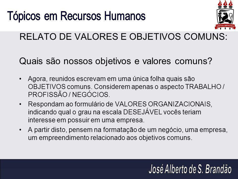 RELATO DE VALORES E OBJETIVOS COMUNS: