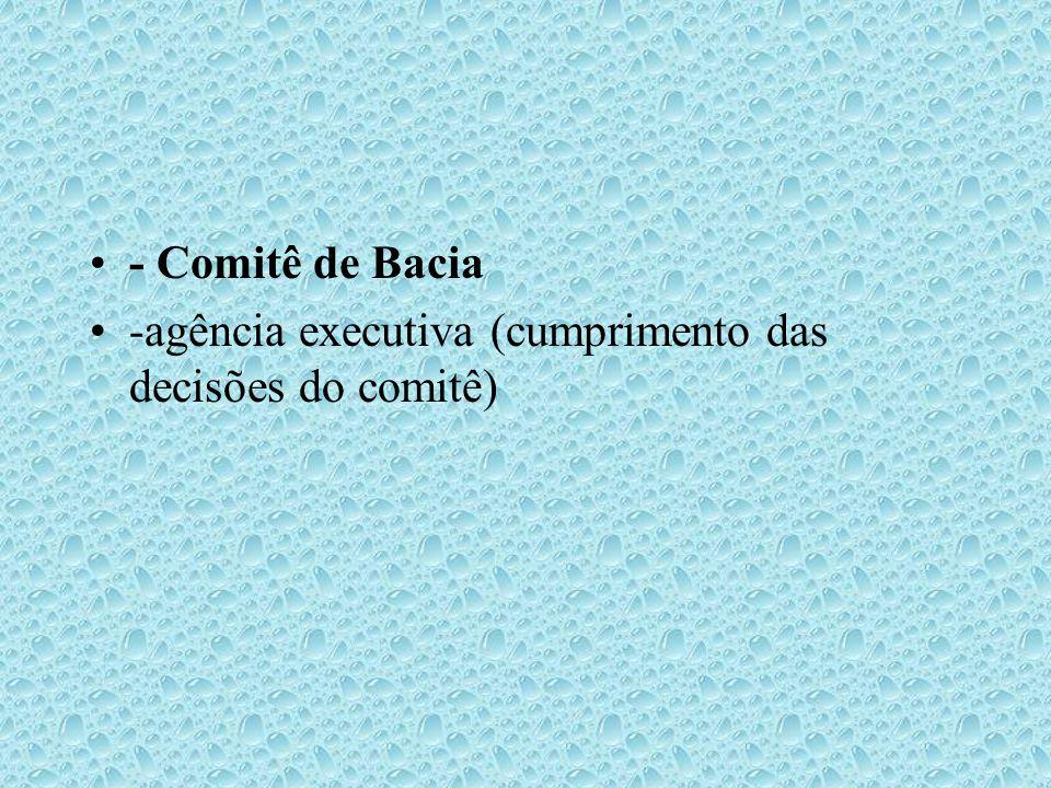 - Comitê de Bacia -agência executiva (cumprimento das decisões do comitê)