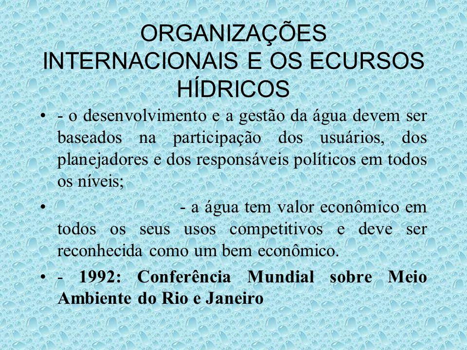 ORGANIZAÇÕES INTERNACIONAIS E OS ECURSOS HÍDRICOS