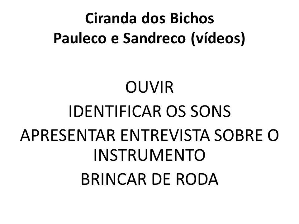 Ciranda dos Bichos Pauleco e Sandreco (vídeos)