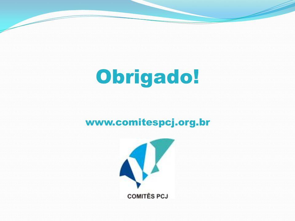 Obrigado! www.comitespcj.org.br