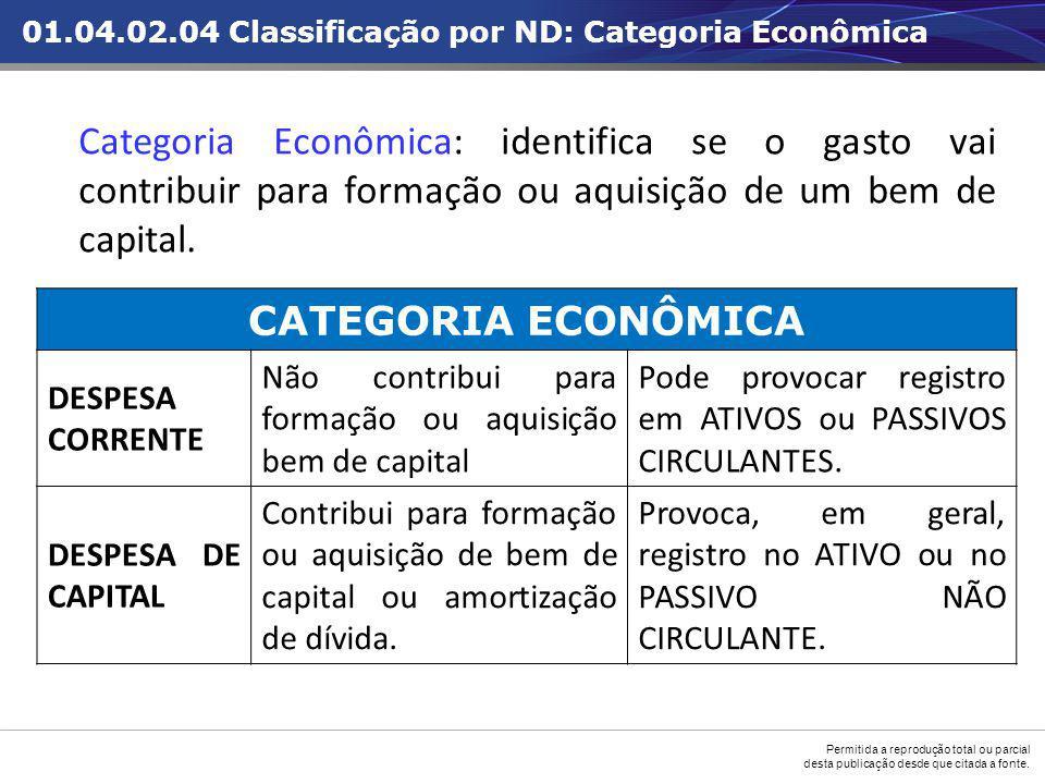 01.04.02.04 Classificação por ND: Categoria Econômica
