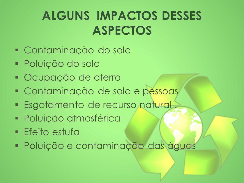 ALGUNS IMPACTOS DESSES ASPECTOS