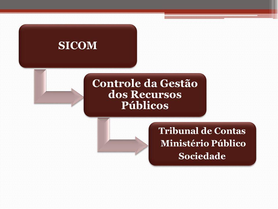 Controle da Gestão dos Recursos Públicos