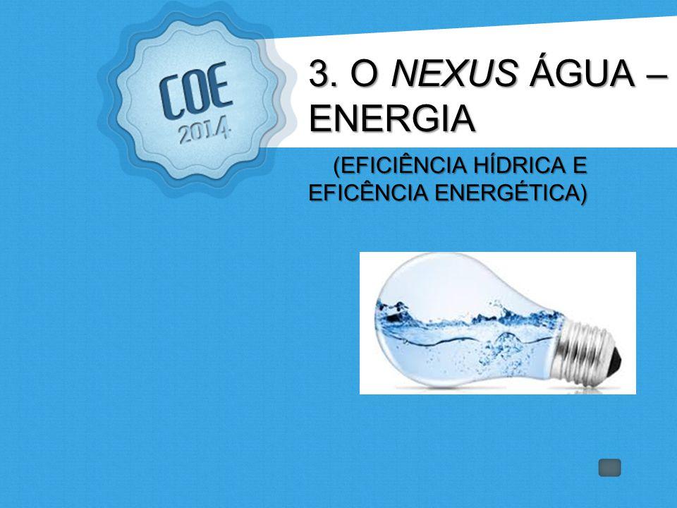 3. O NEXUS ÁGUA – ENERGIA (EFICIÊNCIA HÍDRICA E EFICÊNCIA ENERGÉTICA)