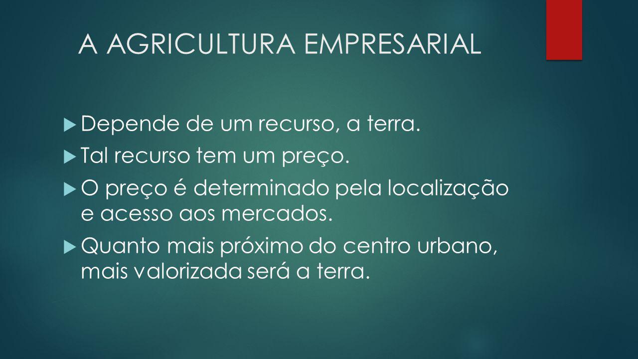 A AGRICULTURA EMPRESARIAL