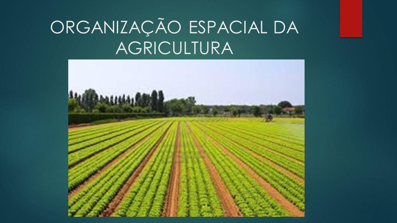 ORGANIZAÇÃO ESPACIAL DA AGRICULTURA