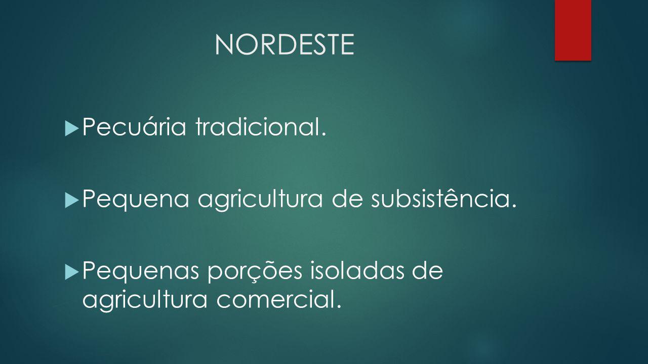 NORDESTE Pecuária tradicional. Pequena agricultura de subsistência.